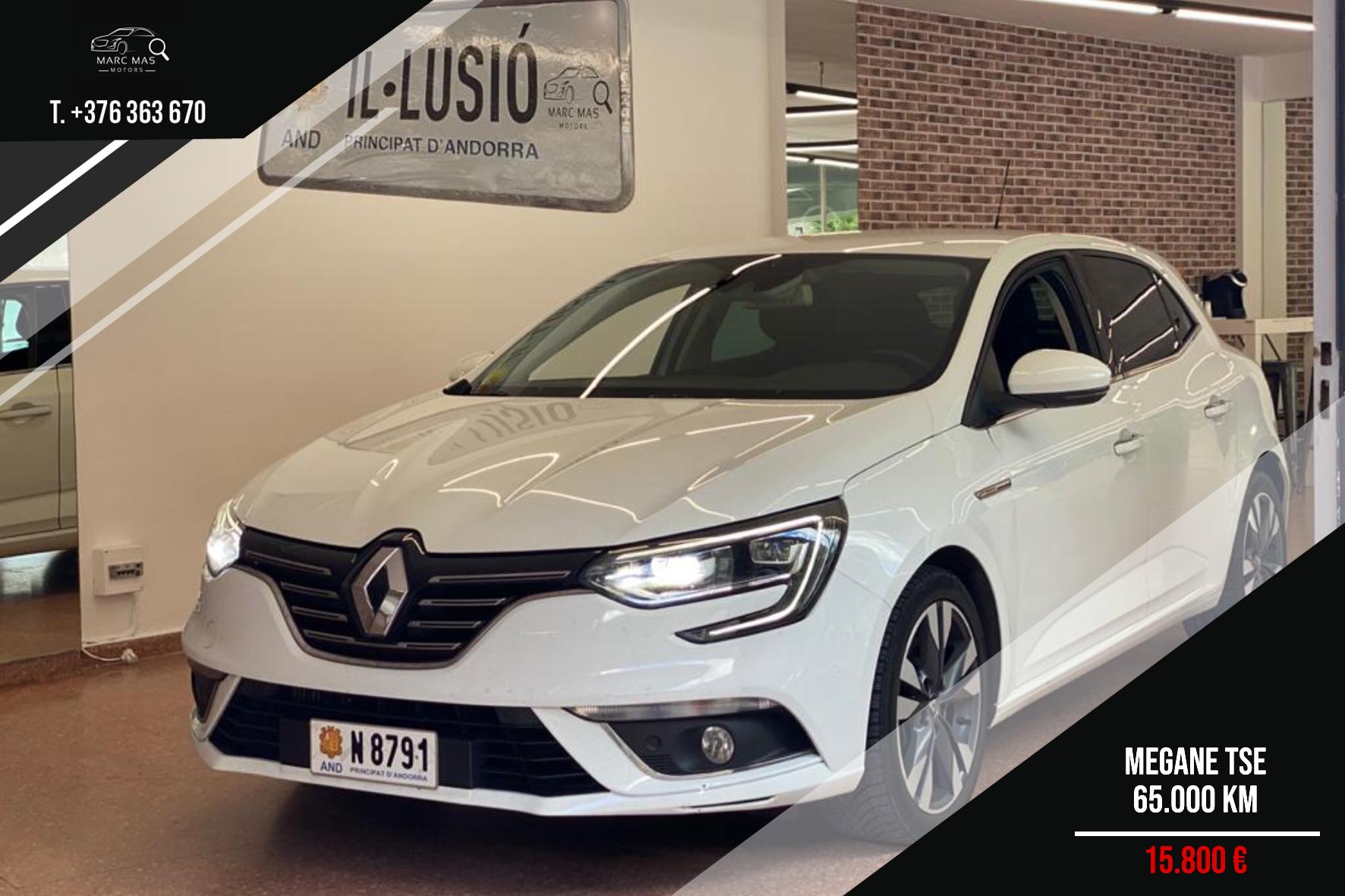 Renault - Megane - TSE   15.800 €